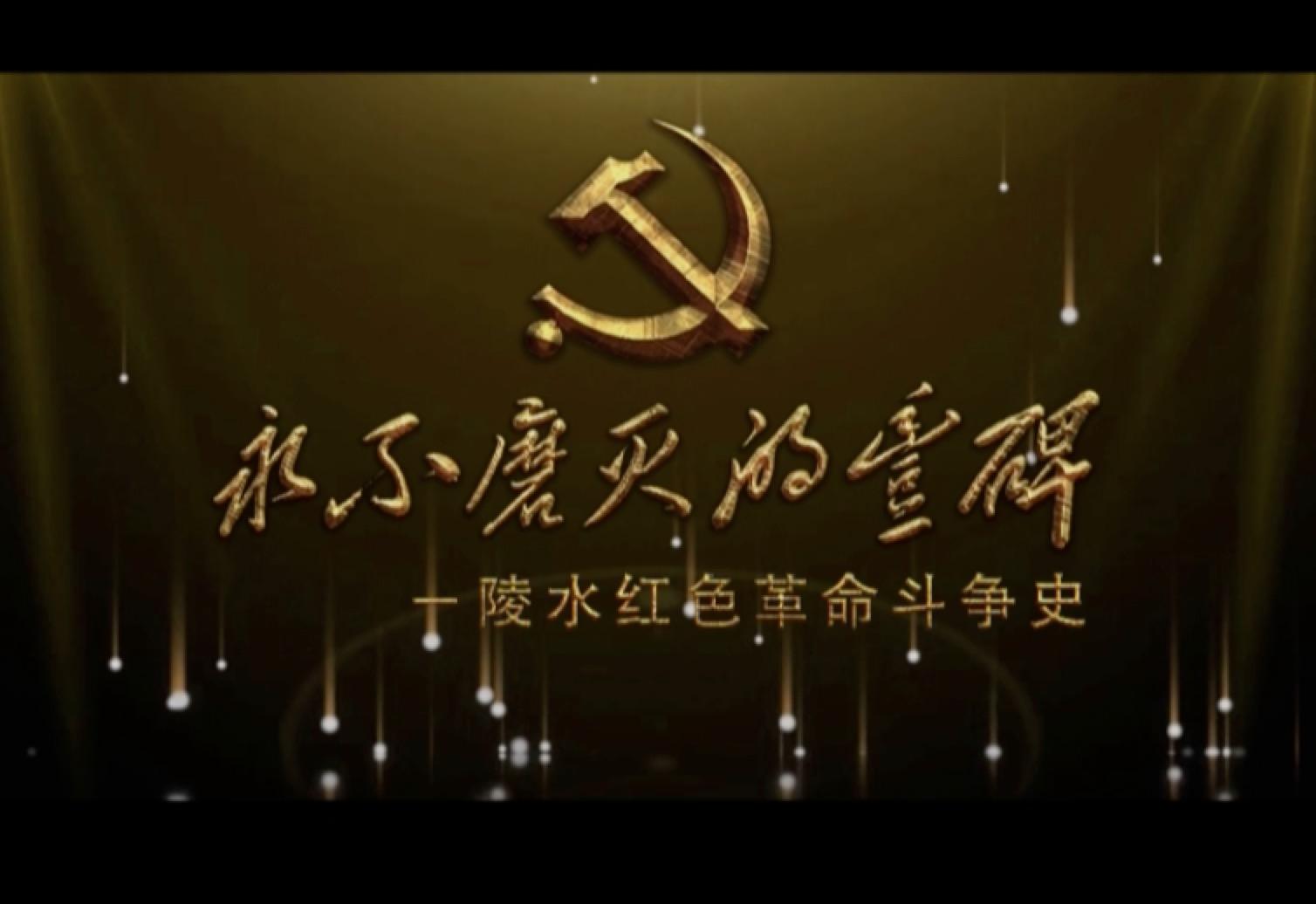 陵水党史记录片